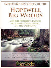 Hopewell Big Woods Pipeline Report